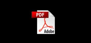 Adobe PDF Icon Phillip CFD